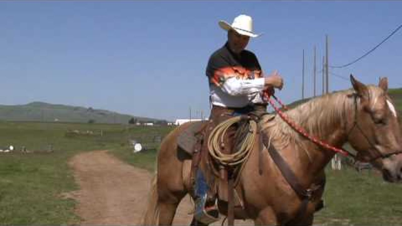 The Basics on how to Use Your Legs While Riding; Rick Gore Horsemanship; www.thinklikeahorse.org